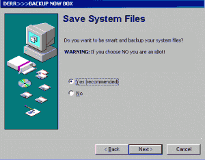 most important computer system files