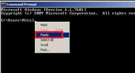 computer tips paste in cmd